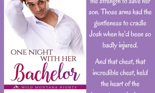 One Night with Her Bachelor quote